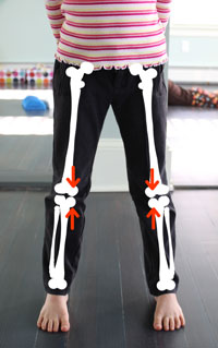 forces on leg bones in wide stance